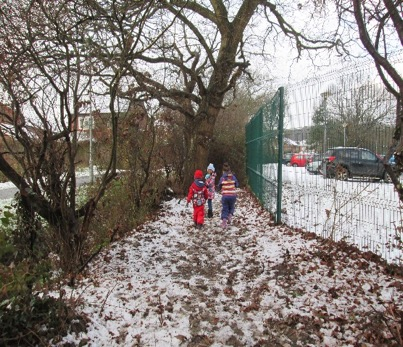 Snowy Woodland Walk