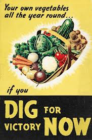 Wartime propaganda poster - Dig for Victory Now
